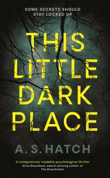 This Dark Little Place